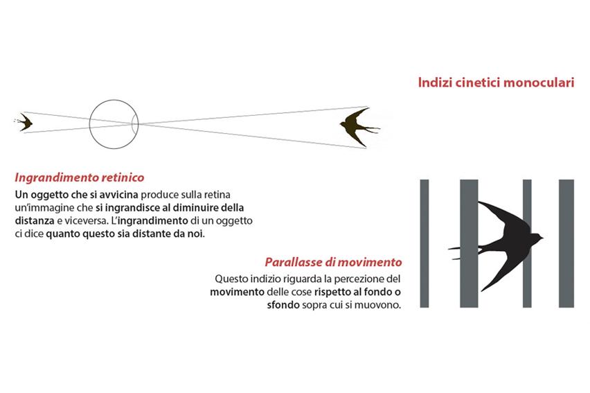 indizi cinetici monoculari