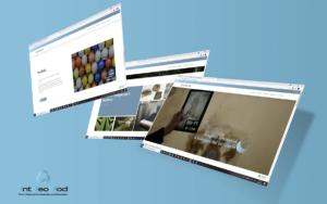 IGM - screen sito web