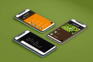 La spesa nell'orto - smartphone 2